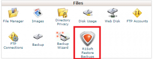 r1soft restore backups icon