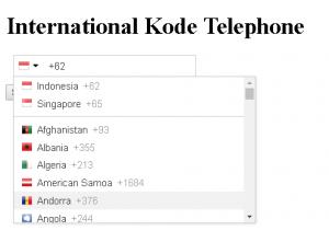 Input Telepon Internasional